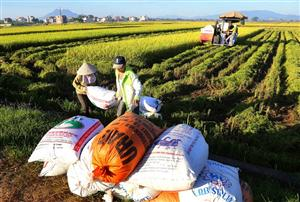 Most farmers set to receive land tax cuts or exemptions
