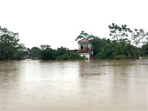 Urgent relief aid provided for flood-hit people