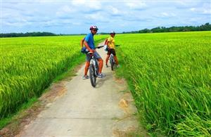 Vietnamese startup takes second prize in regional travel startup competition