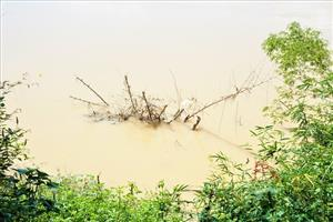 Erosion threatens people living by Thu Bon River