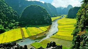 Vietnam cited among top 20 Best Places To Live Overseas