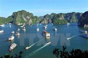 Plan helps protect aquatic resources in Ha Long Bay