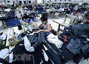 CPTPP to create more opportunities for Vietnamese, Japanese firms