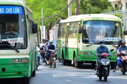 HCM City seeks to develop public buses