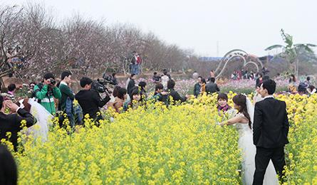 Young Hanoians descend on flower villages for photo shoots