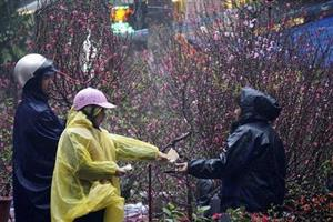 Cold spell poised to hit northern and central regions over Tet