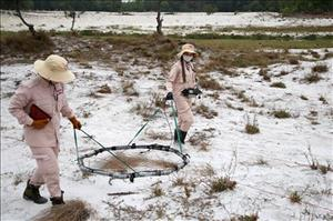 Quang Tri targets 3,000ha of land freed from UXO each year