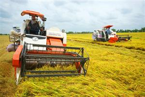 Mekong Delta targets 9.4 percent growth in 2015