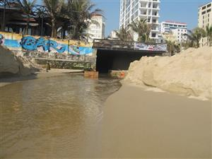 Đà Nẵng fines polluting project owner