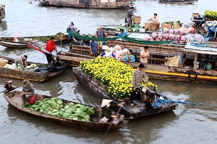 Splash of spring colour at Can Tho floating market