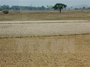 Severe water shortage forecast for central region in 2016