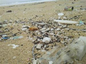 Oil clumps cover beach in Quảng Nam Province