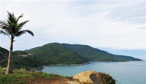 Son Tra Peninsula to become national tourism area