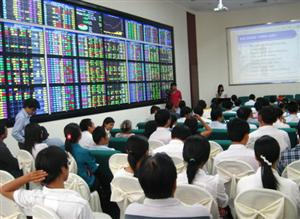 Vietnam's volatile stock market draws money, needs depth