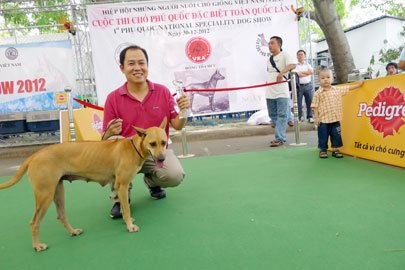 Looking for development of the Phu Quoc dog breed
