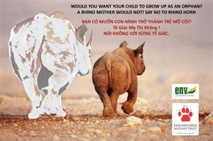 """Stop Using Rhino Horn"" campaign launched"