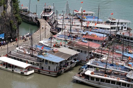 Vessels banned for Ha Long Bay for safety violations