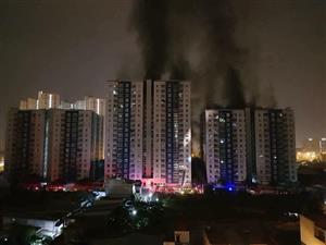 13 killed, 28 injured in apartment building fire in HCM City