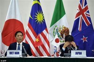 11 Pacific trade pact countries go it alone without US