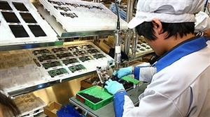 Vietnam gains higher exports to Canada, Mexico partly due to CPTPP