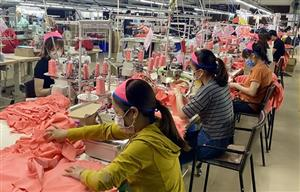 Up to 18,600 firms suspend operations in Q1 due to COVID-19