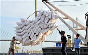 Rice exports hit nearly US$1 billion in four months