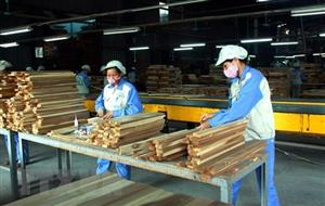 Forestry product exports rise by nearly 18% in first four months
