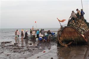Bottom trawling a threat to the ocean, fishermen