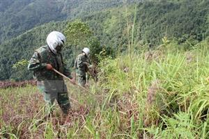 Steering Committee on UXO, toxic chemical consequences established