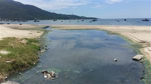 Two projects found discharging waste water into Đà Nẵng beaches