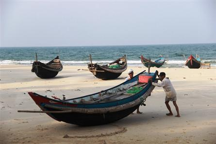 Challenges still face central region seafood safety