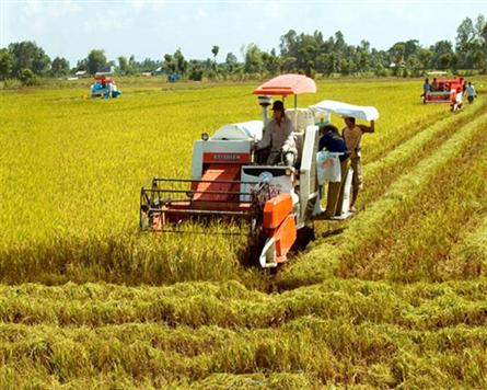 World Bank offers agriculture sector critique