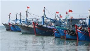 Tasks assigned to put an end to IUU fishing by year's end