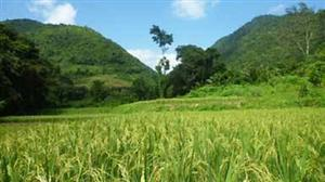 $84 million for low-carbon agricultural support