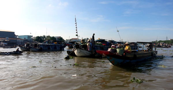 Beauty of the Mekong Delta region during flood season