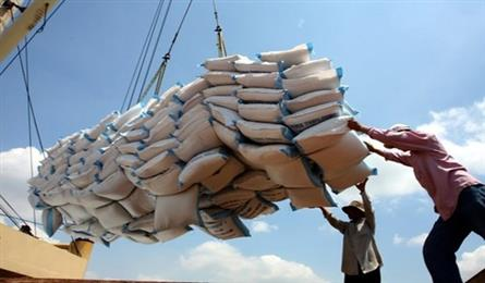 Rice exports set to reach 6.5 million tonnes during 2019