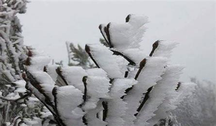 Frost forecasted for northern mountainous areas this weekend