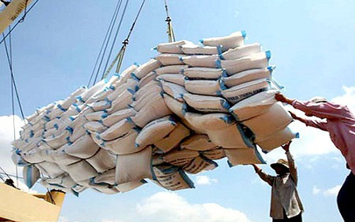 Vietnam's rice exports on sharp fall DTiNews