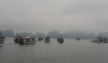 Tourist boat operator in Ha Long suspended for overcharging travellers