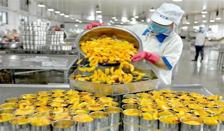First-half GDP growth for Vietnam projected at 5.8%