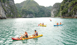 Ha Long Bay's future discussed