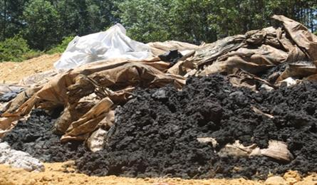 Inspection into Formosa waste dumping urged