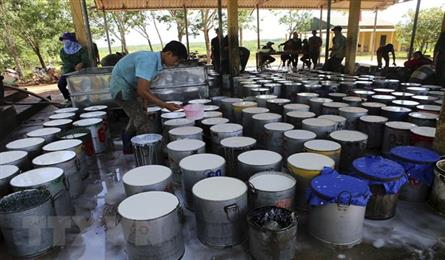 Vietnam's rubber export to US sees sharp surge