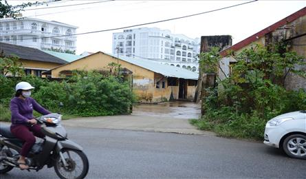 Polluting slaughter house to be moved out of Hoi An