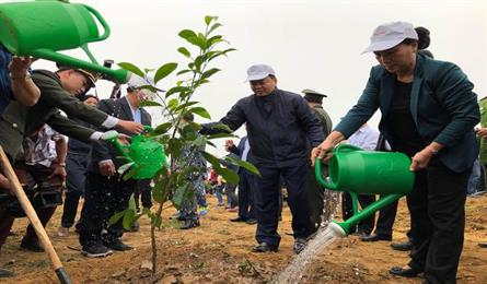 New Year Tree Planting Festival launched in Hoa Binh