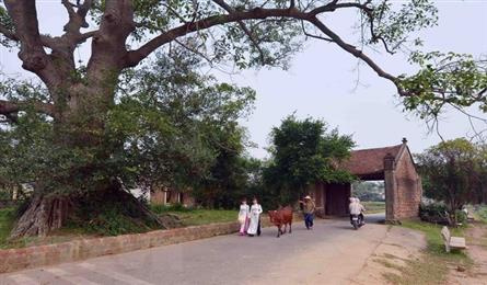 Duong Lam first Vietnamese ancient village to become national relic