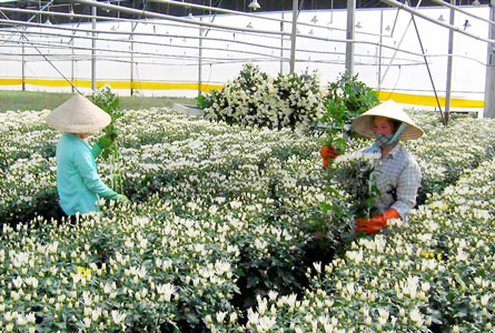 Ministry wants hi-tech agriculture zones