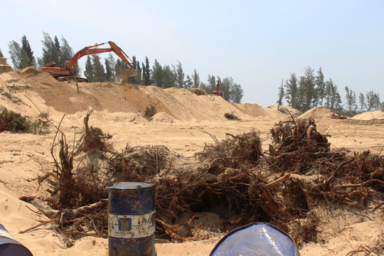 Protective forest destroyed for golf course