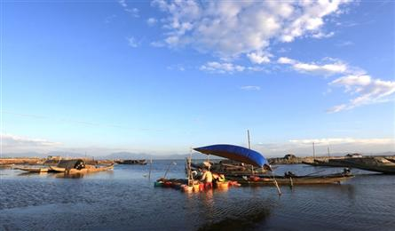 Tam Giang Lagoon: full of all kinds of life