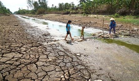 Ministry to allocate VND4bn to fight drought in the Mekong Delta